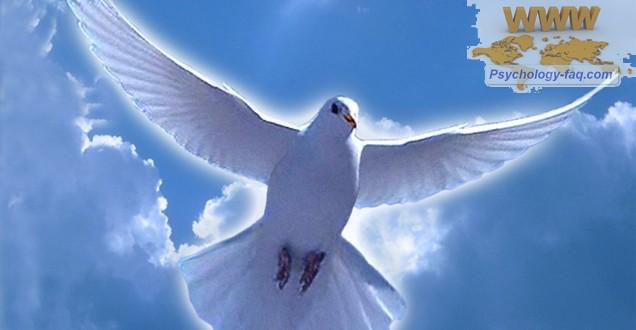 Праздник Крещение Господне - очищение Души и тела!