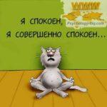 Анекдоты, приколы и шутки про психологов, коучей и психотерапевтов
