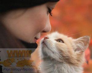 Есть ли душа у животных